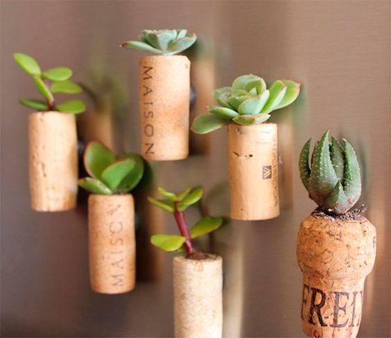 Plant cork magnets